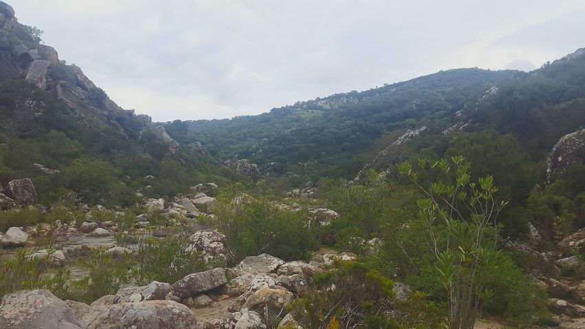 Nature SPAIN Hiking Adventures Looking For Adventures Alcornocales Hiking❤ Hiking Trail Mountain Hikinglife Forrest Hiking View Trees Jimena De La Frontera Love Hiking Earth River Riverside River Walk River Life Hiking
