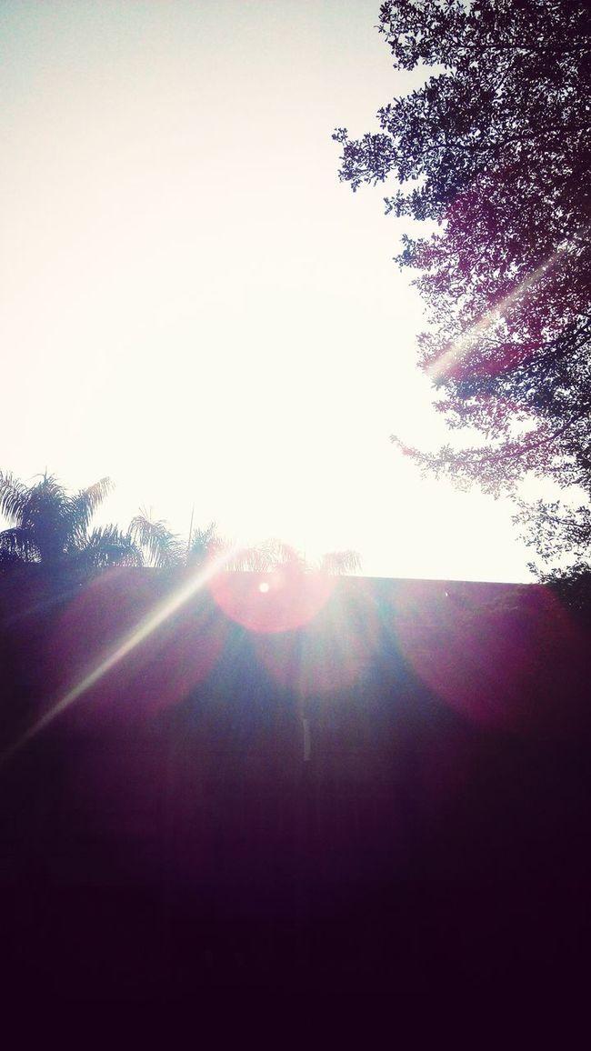 You are my sunshine.新民高中