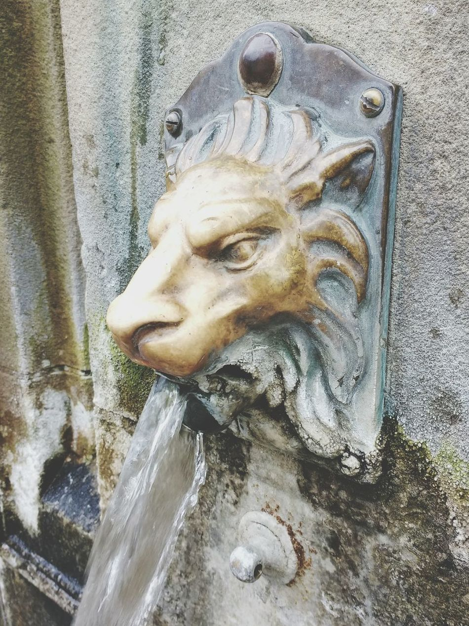 Natural Spring Water Spring Water St Ann's Well Close-up Water Lion