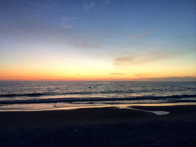 Life Is A Beach EyeEm Nature Lover Sunset Beautiful