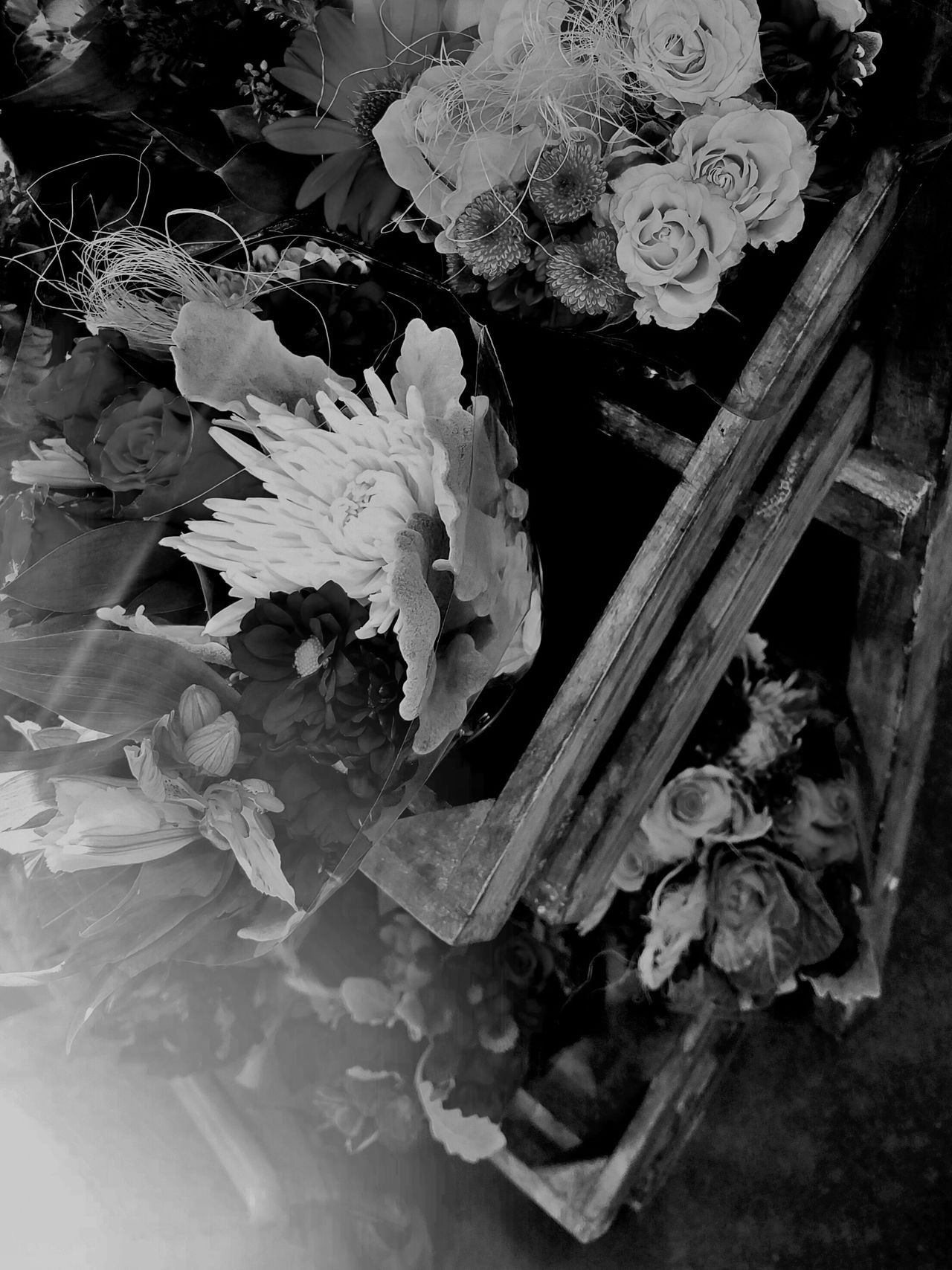 B&W Flowers Stand Beauty In Nature Blackandwhite Photography Close-up Day Fine Art Flower Flower Arrangement Flower Head Fragility Freshness Indoors  MUR B&W Nature No People Petal