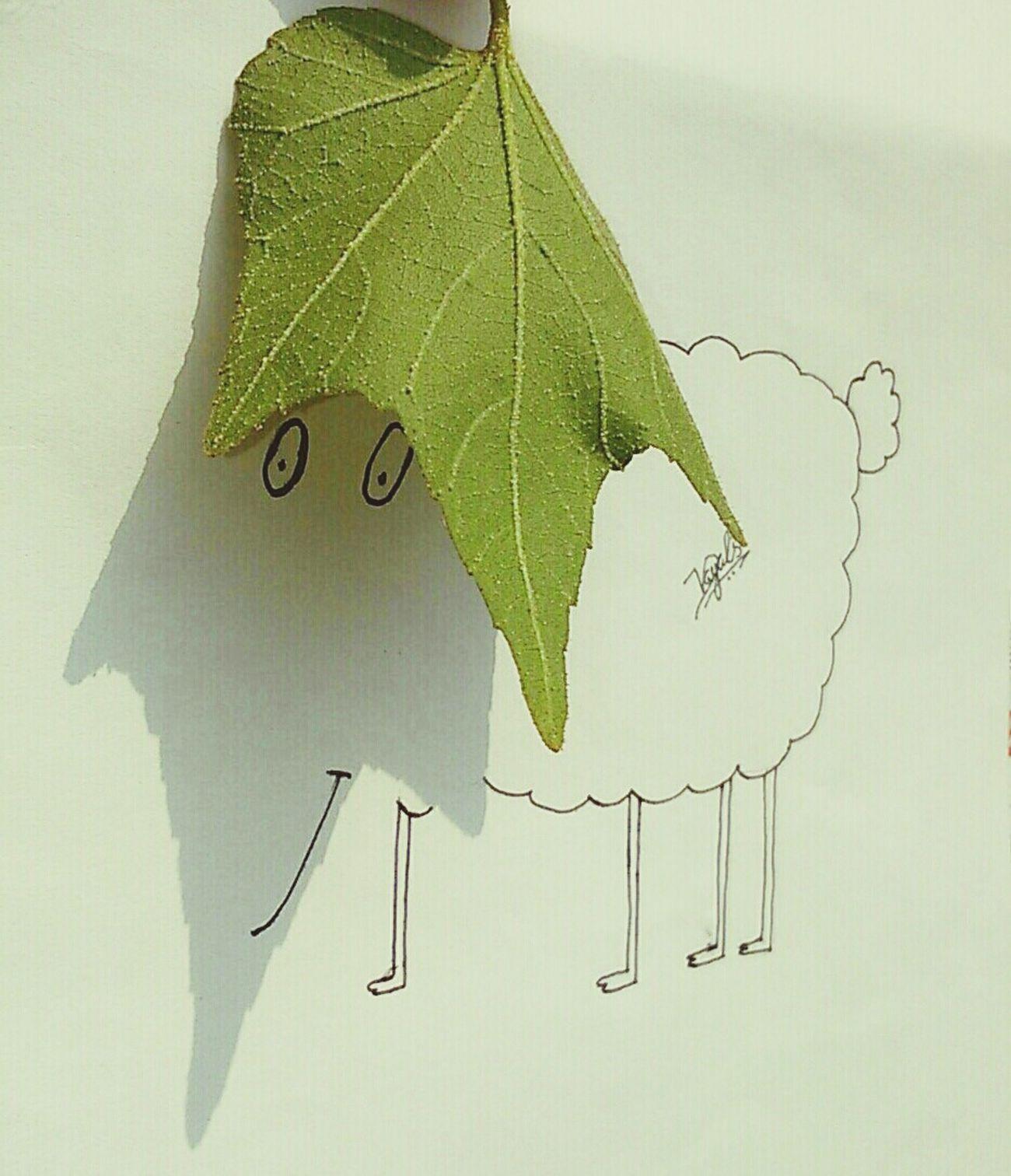 ☀SHADOW ART-1 (SHEEP)🐑 Art Myartwork Myartbook MyArt Artist ArtWork Drawing ArtInMyLife Pencil Art Arts Art Gallery Artoftheday Draw Artgallery Artworks Arte Artsy Creative Shots Creativity Creative Art, Drawing, Creativity Shadow Shadow-art Paper Pencil Drawing