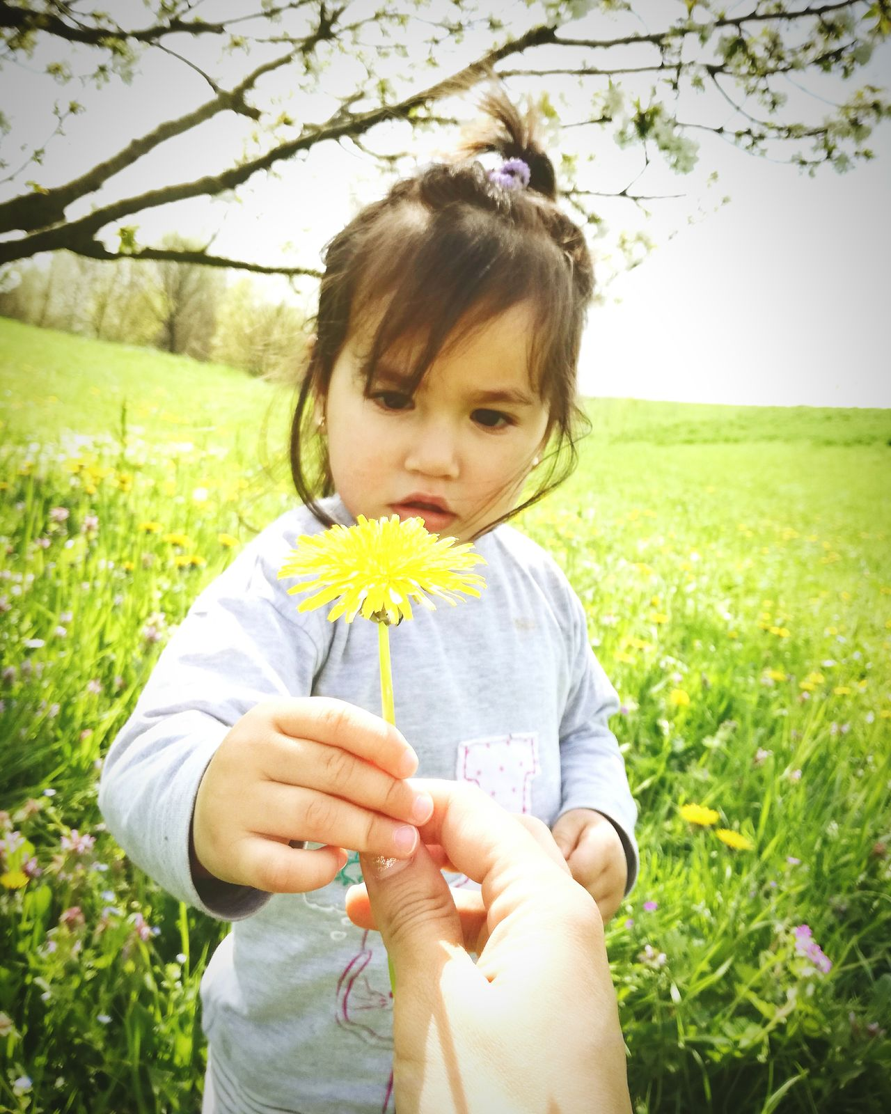Greenworld Green Nature Nature Photography Child Nature Flower Plant Yellow One Girl Only People Portrait Childhood Children Only Outdoors Italygram Italy Photos Natureporn Nature Beauty Italiangirl Nature_shooters Nature In The City Nature Colors Tree Beautiful People Moments Of My Life @ 私の人生の瞬間。 The Portraitist - 2017 EyeEm Awards
