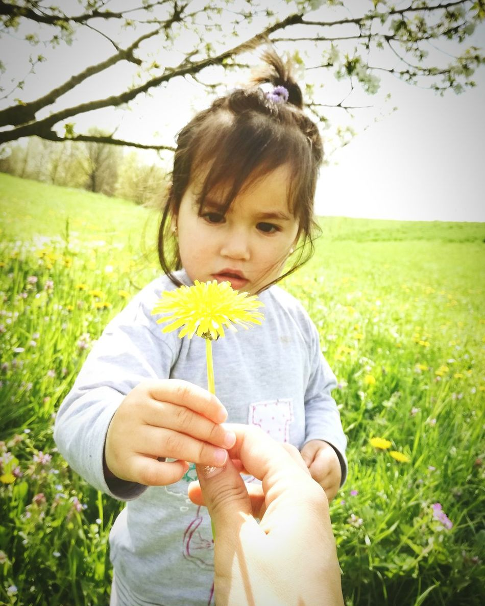 Greenworld Green Nature Nature Photography Child Nature Flower Plant Yellow One Girl Only People Portrait Childhood Children Only Outdoors Italygram Italy Photos Natureporn Nature Beauty Italiangirl Nature_shooters Nature In The City Nature Colors Tree Beautiful People Moments Of My Life @ 私の人生の瞬間。