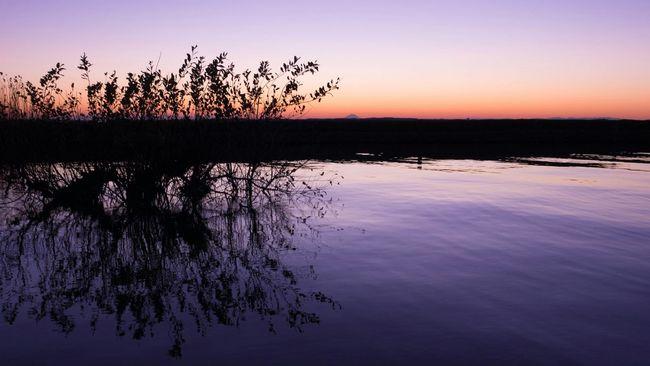 Water Reflections Reflection Magic Hour Mt.Fuji Beautiful Sunset Nature