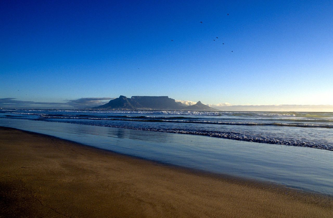 Beauty In Nature Scenics Sea Tranquil Scene Nature Beach Tranquility Blue Water Outdoors Sky Sand Travel Destinations Clear Sky No People Landscape Mountain Vacations Bird Day Cape Town Table Mountain Table Mountain View Sunset EyeEmNewHere
