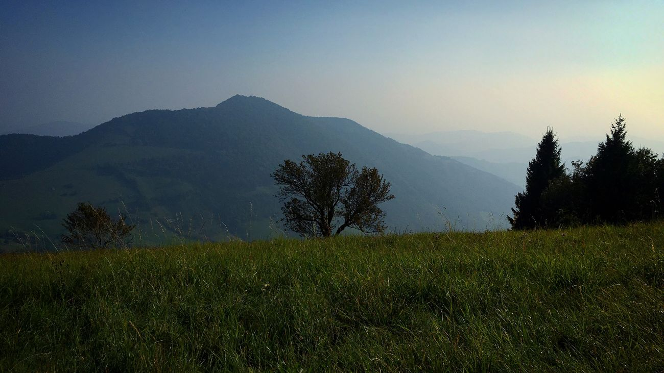 Maximum Closeness Italia Travel Mountain Nature Beauty In Nature Landscape No People Outdoors Sky Mountain Range Traveling Travel Photography Light And Shadow Italy Panorama Landscape_Collection EyeEm Nature Lover Tranquility Tranquil Scene Day Mountain View Mountains Mountains And Sky Green