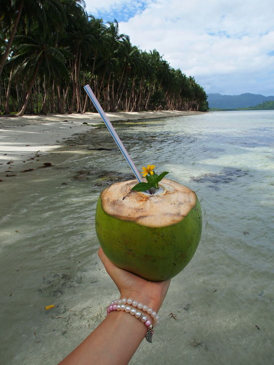 Allinclusive Coconut Coconut Coconut Trees Drink Drinking Drinking Coconut Drinking Straw Food Food And Drink Freshness Fruit Healthy Eating Holding Holiday Nature Onthebeach Palm Tree Paradise Paradise Beach Philippines Travel TravelDestinations Vacation Water