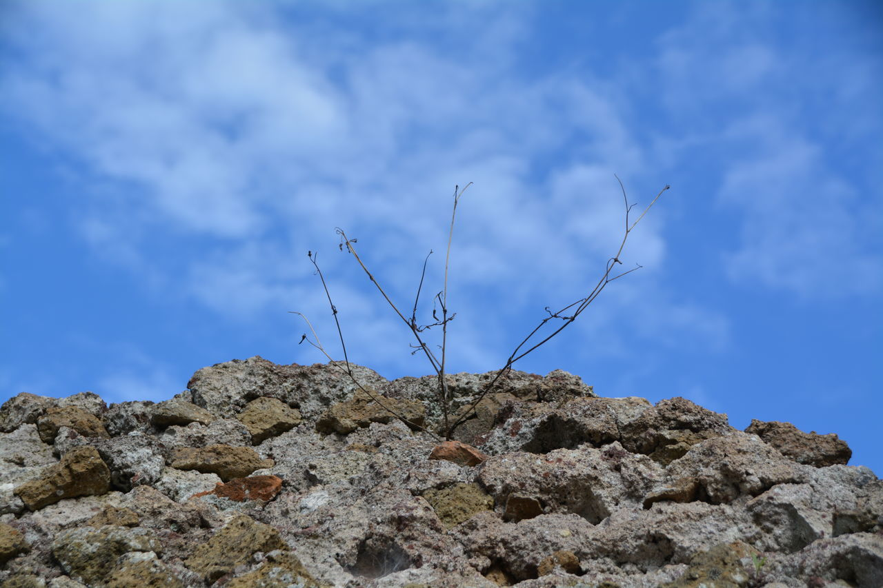 rock - object, nature, day, sky, low angle view, outdoors, no people, cloud - sky, beauty in nature, tranquility, blue, close-up