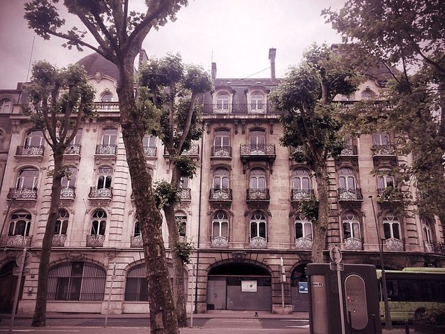 Architecture Building Front View Façade Metz France Foch Avenue Foch City Tree Bus Sky Red Velvet Urbain Life City Life Outdoors Residential Structure Residential Building Residential