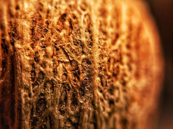 Close-up Brown No People Indoors  Food And Drink Textured  Backgrounds Night Freshness