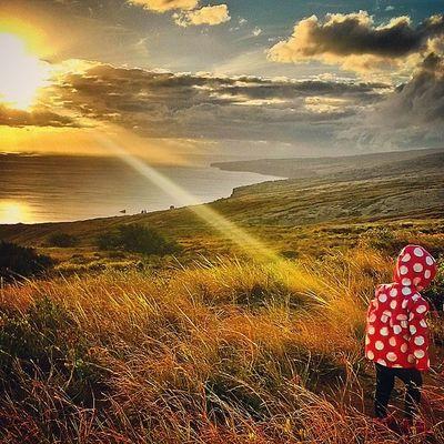"""""""You are my sunshine, my only sunshine"""" @choch00 @raynebows07 Daddysgirl Alaina33013 MySunshine Lanaimobetta @venturehawaii aloha"""