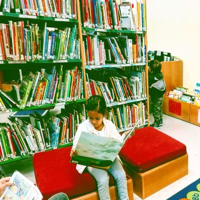 One Person Abundance Large Group Of Objects Indoors  Choice Variation Bookshelf Book Library Boys Childhood Stack People Education Casual Clothing Leisure Activity Learning One Boy Only Shelf Child Lecture Lecture Room Lecture Du Moment Enfant