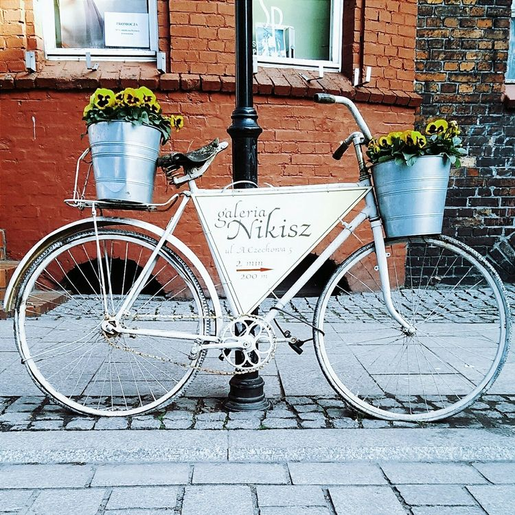 Lovely Weather Vscocam Relaxing Beautiful Day Enjoying Life Streetphotography Bikes Art