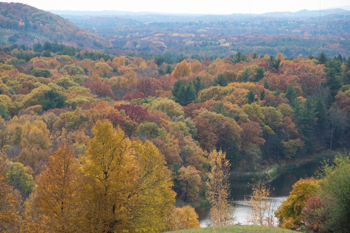 Autumn Autumn Leaves Berkshires Fall Foliage Frederick Church Hudson River School Pain Hudson Valley Nature New York State Olana Trees