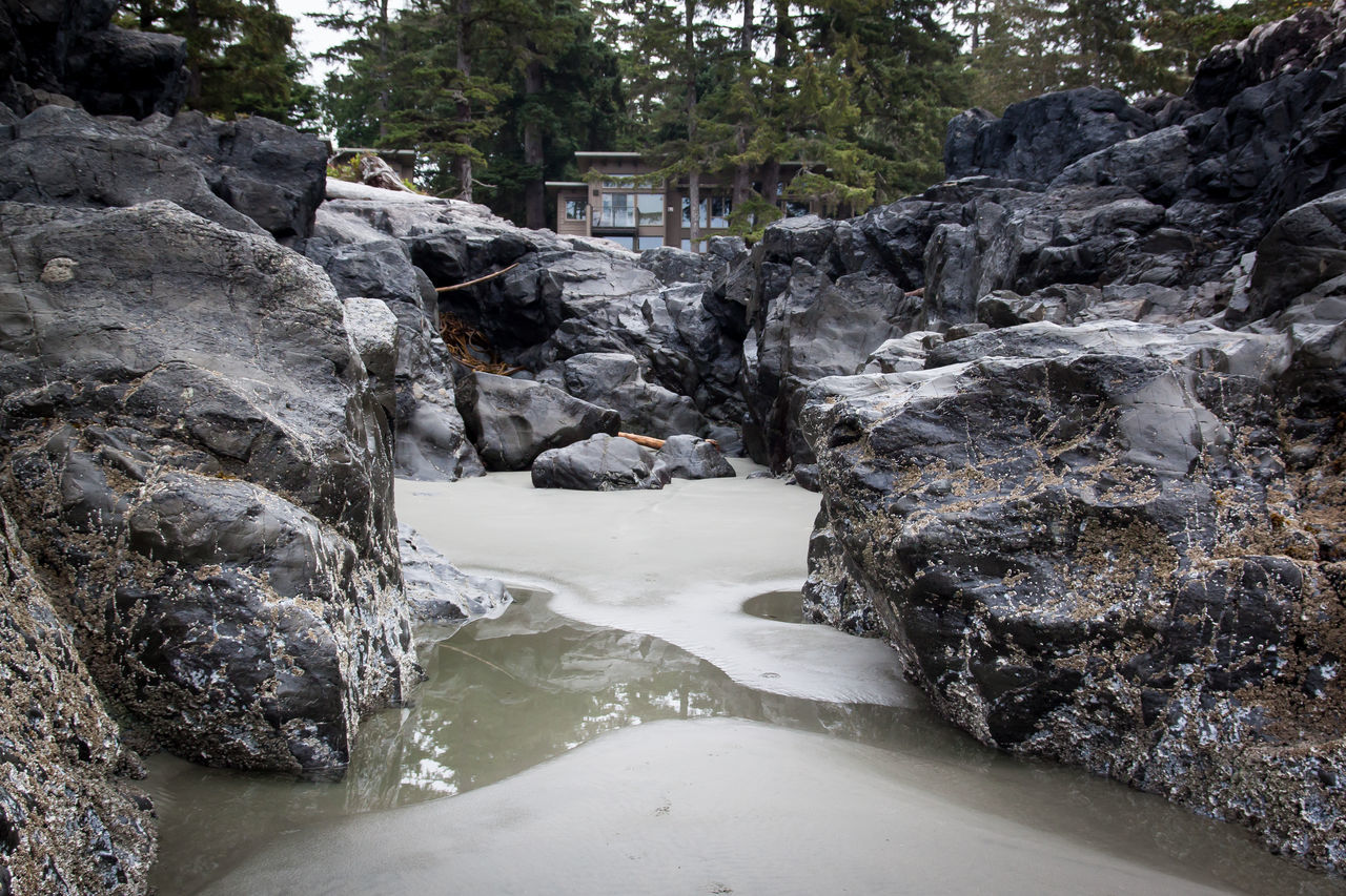 low tide revelations of sand, tide pools , and rock formations with trees and architecture in background Beauty In Nature Day Geology Low Tide Low Tide Revelations Nature No People Non-urban Scene Outdoors Remote Rock - Object Rock Formation Sand Scenics Snow Stone Material Stream Tide Pools Tourism Tranquil Scene Tranquility Travel Destinations Vancouver Island Canada
