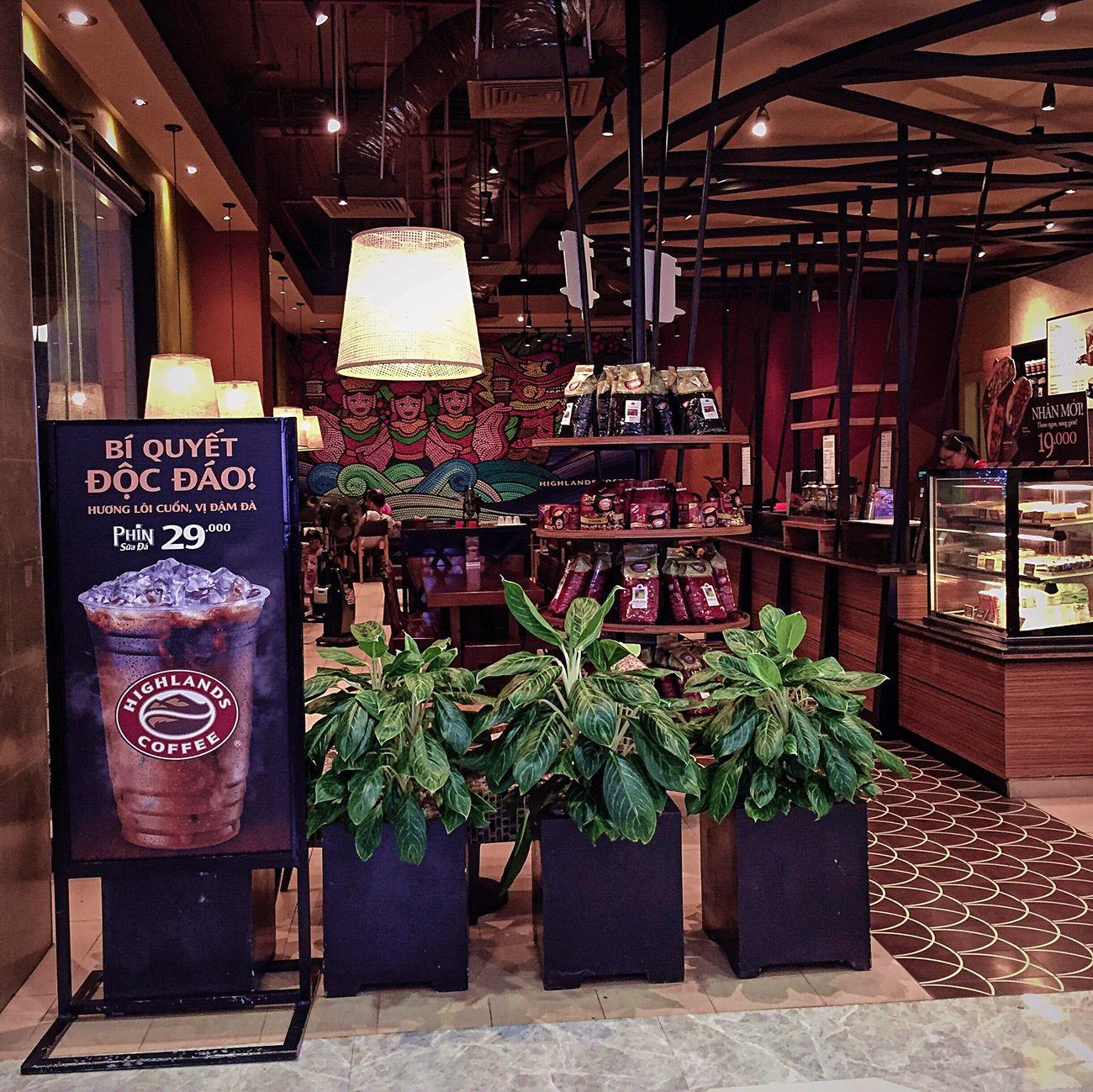 Hải Phòng Vietnam Cafe Travel Cozy Highlands Coffee