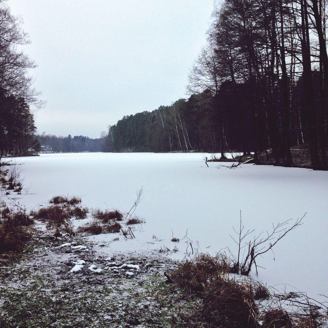 Winter lake Latvia