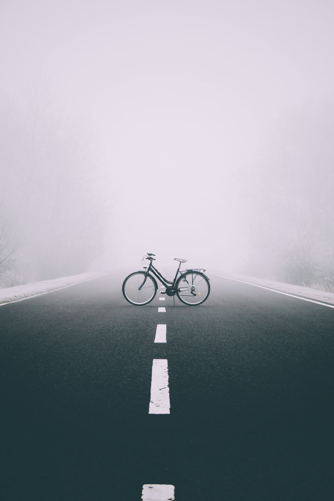 Bicycle No People Fog Day Outdoors Fresh On Market 2016