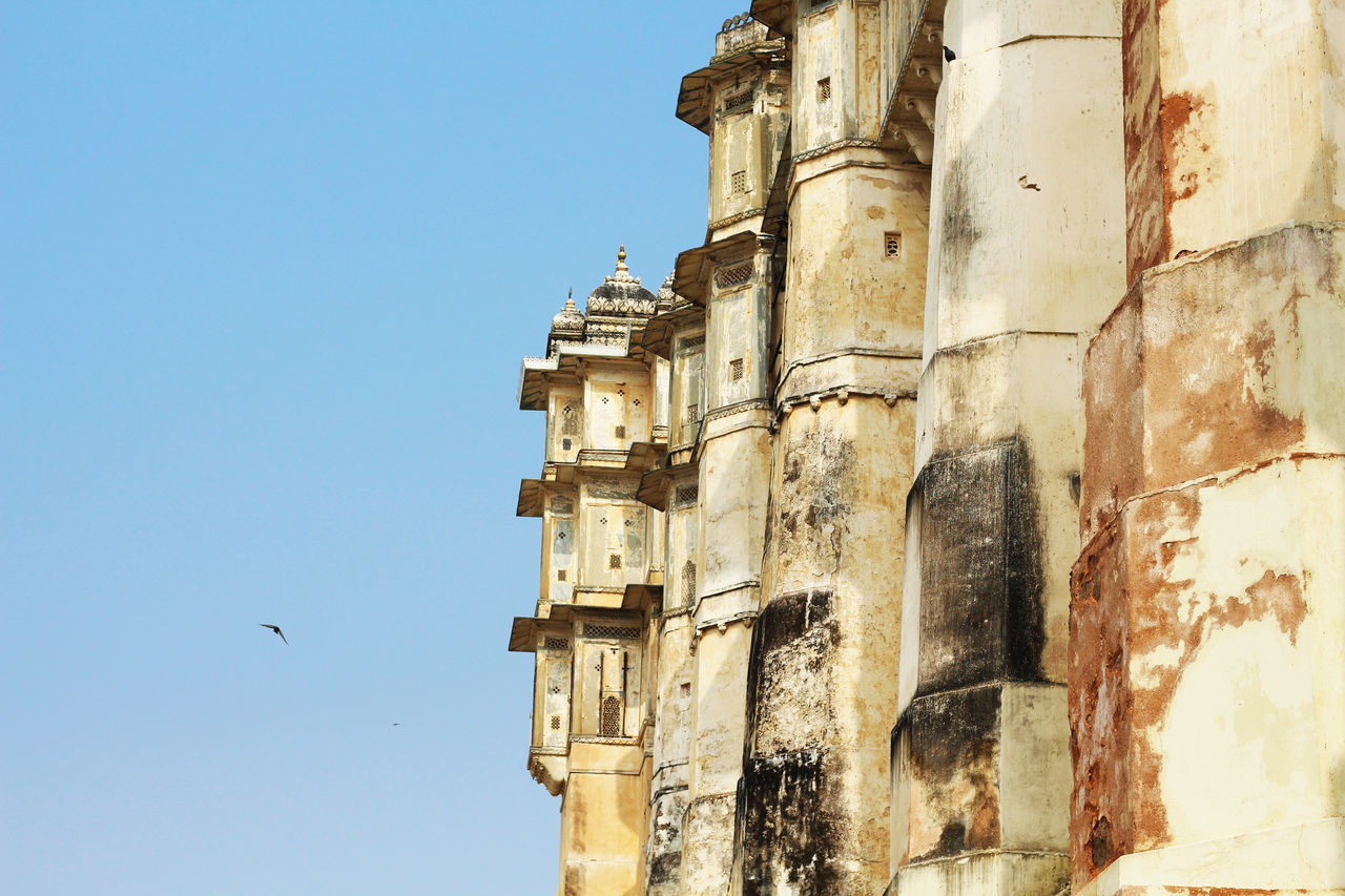 architecture, history, built structure, building exterior, low angle view, religion, ancient, bird, day, place of worship, flying, spirituality, no people, old ruin, outdoors, clear sky, ancient civilization, animal themes, sky