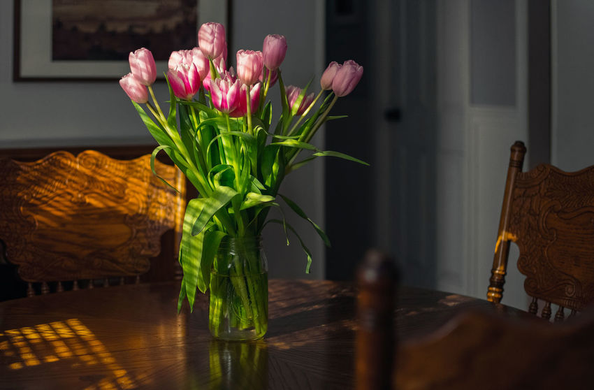 Tulips on Kitchen Table Bouquet Close-up Day Flower Flower Head Flowers Freshness Home Interior Indoors  Kitchen Kitchen Table Nature No People Still Life Table Vase