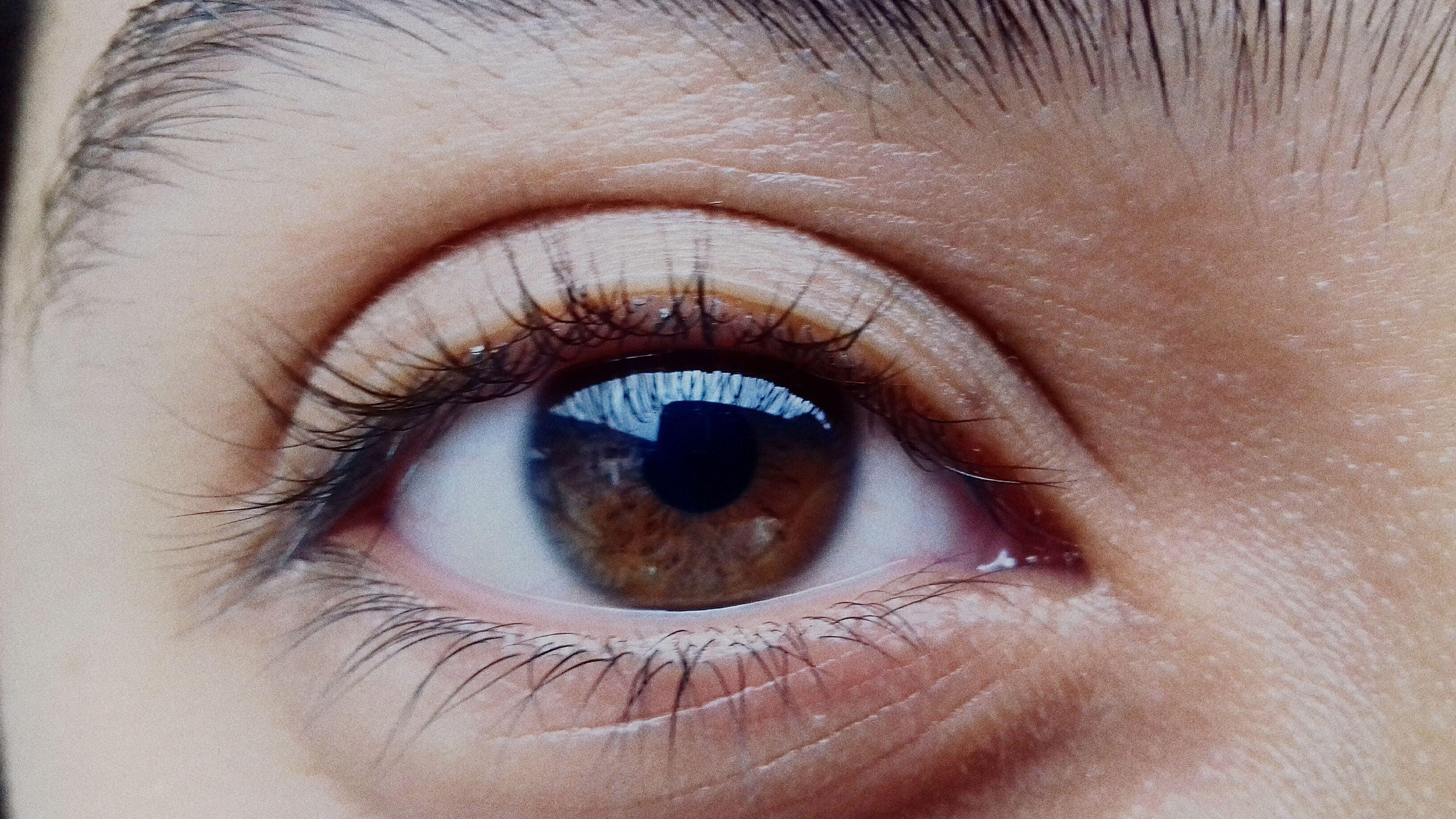 human eye, eyelash, close-up, human body part, eyeball, macro, full frame, sensory perception, iris - eye, eyesight, real people, one person, human skin, eyebrow, outdoors, people, day