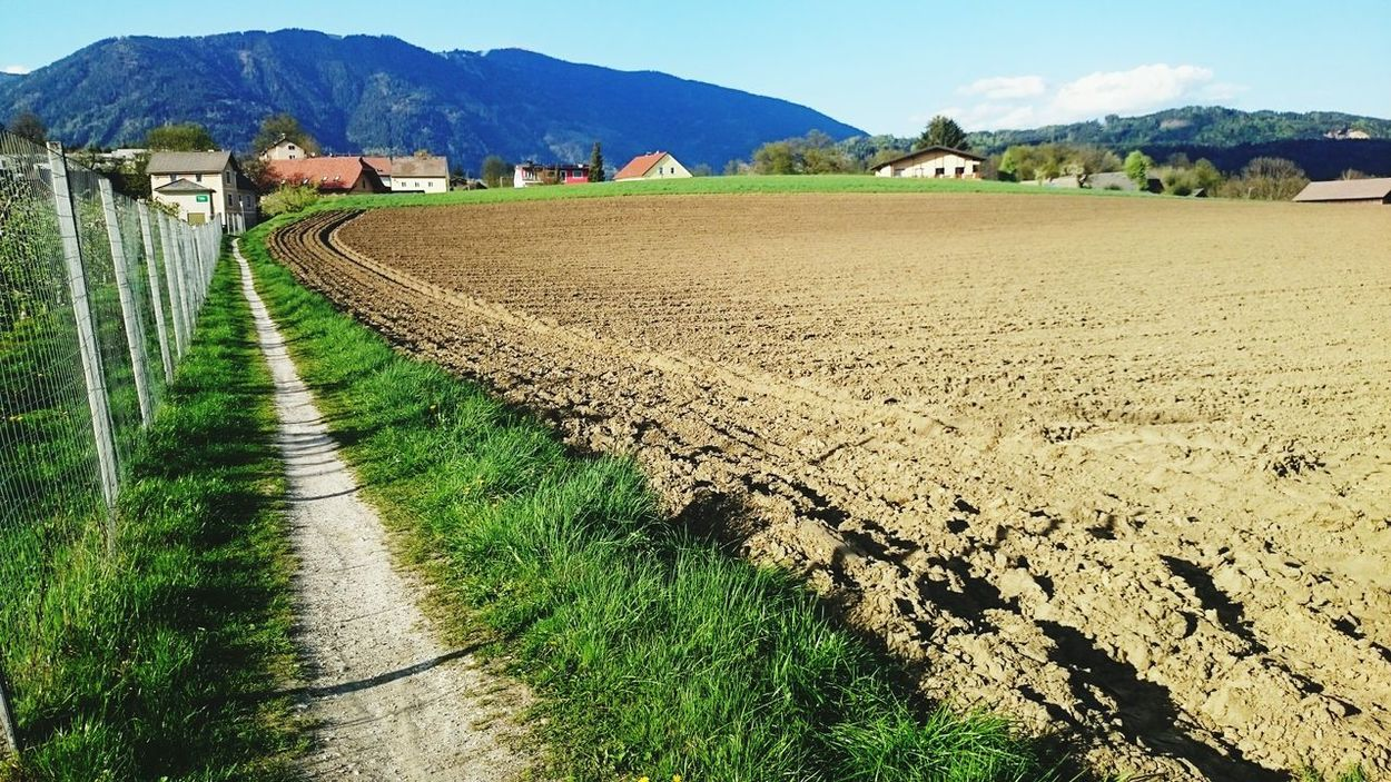 Beautiful Wheather Fieldscape Austrianphotographers Pathway Daily Routine Green Grass Carinthia