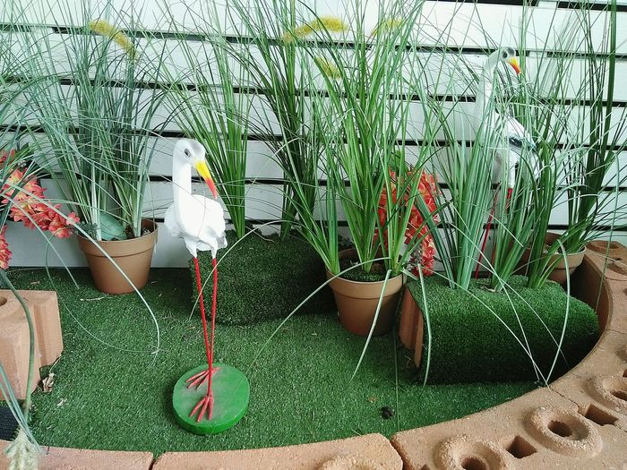 Green Color Bird Growth Outdoors No People Plant Beauty In Nature Perching Bird Model Bird Sculpture Bird Statue  Sculpture Statue Decor Decoration Decorative Exterior Design Grass