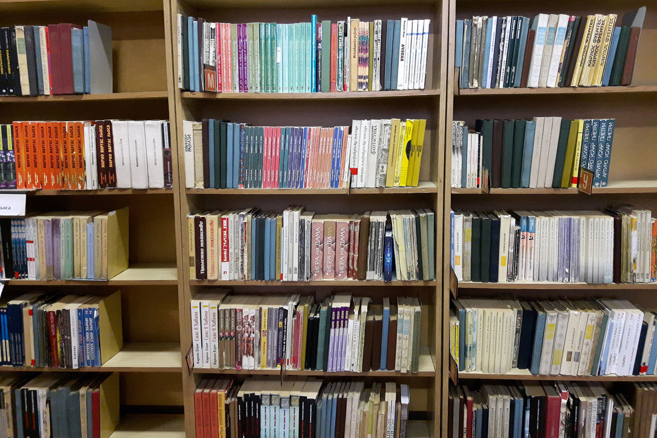 book, bookshelf, shelf, library, indoors, in a row, wood - material, literature, bookstore, large group of objects, arts culture and entertainment, backgrounds, no people