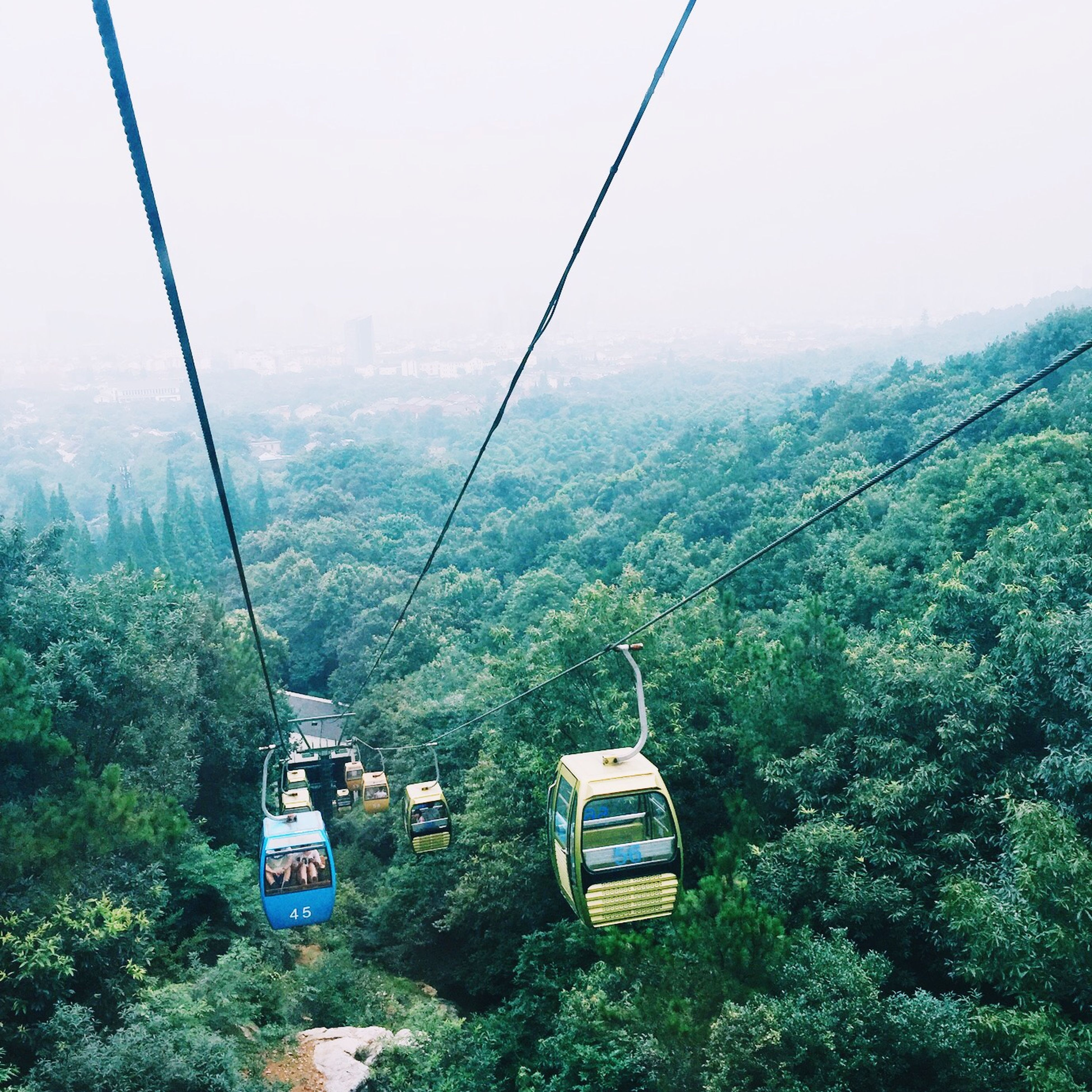 tree, mountain, transportation, green color, mode of transport, overhead cable car, nature, fog, tranquility, tranquil scene, scenics, lush foliage, growth, forest, beauty in nature, landscape, non-urban scene, day, high angle view, plant