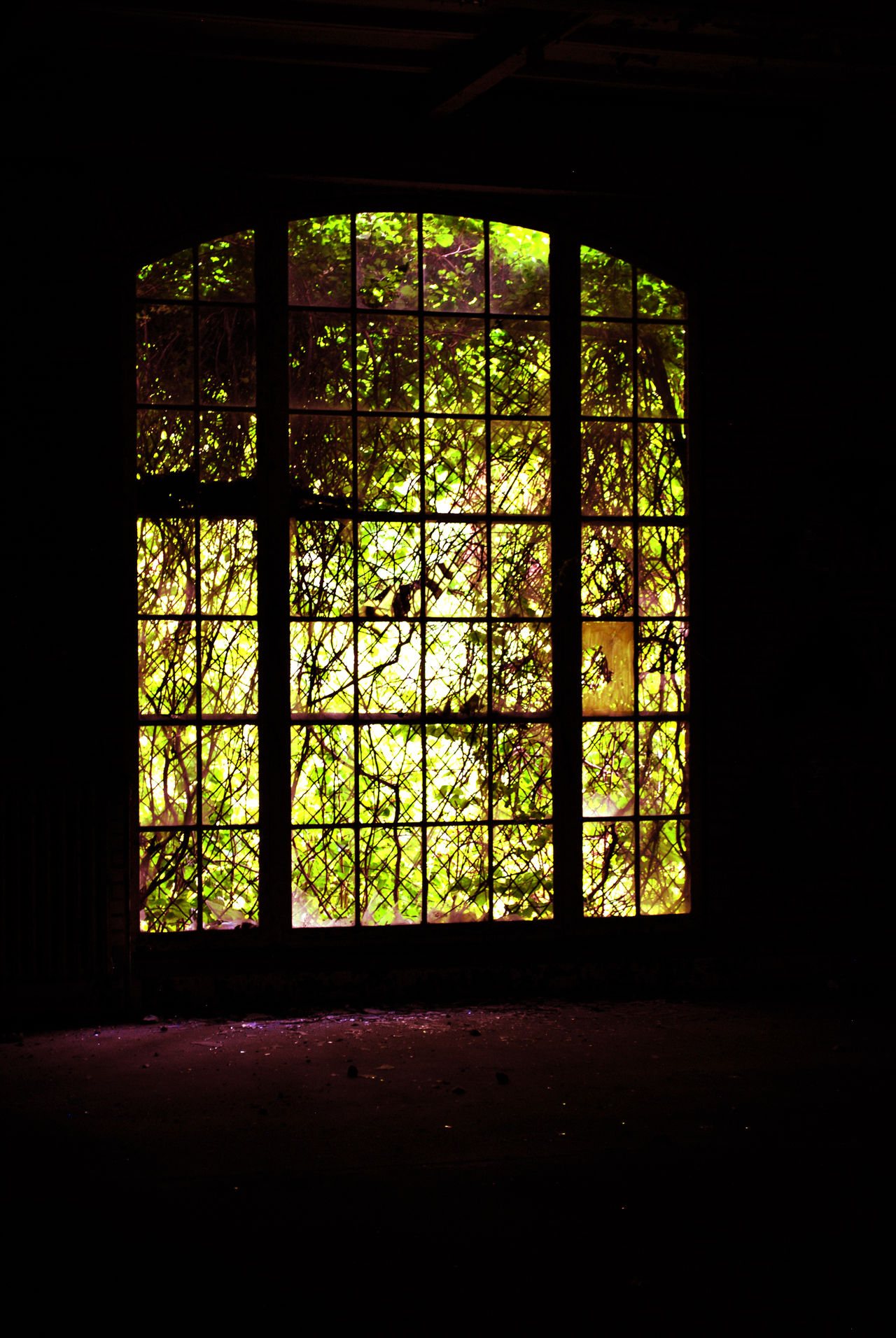Abandonded Hospital Abandoned Abandoned Buildings Abandoned Places Architecture Haunted Stained Glass Window Window