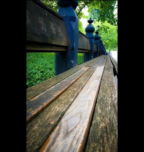 Walking Around Beautiful CentralPark Park Bench NYC Photography NYC Centralparkphotos MyCity❤️