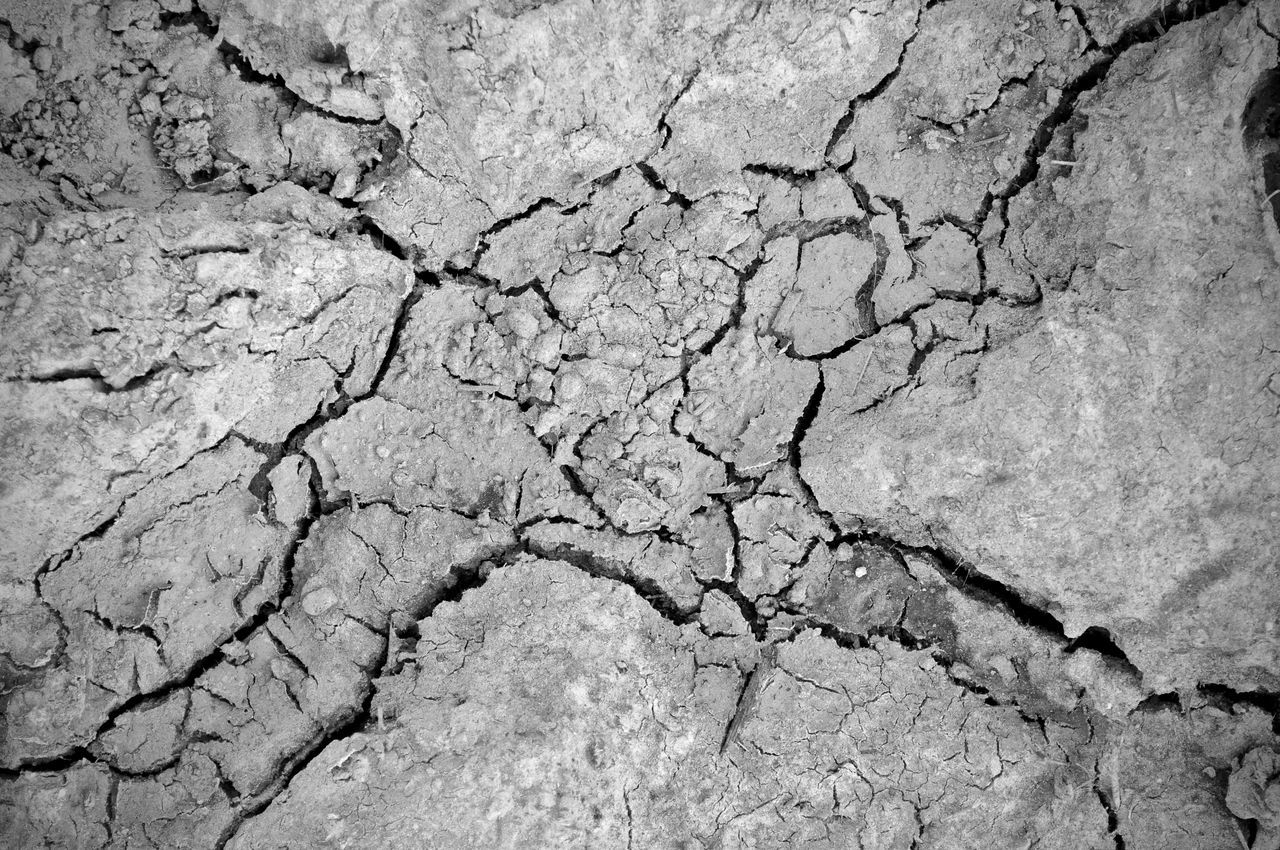 cracked, drought, arid climate, textured, land, barren, environment, backgrounds, global warming, environmental issues, mud, geology, extreme terrain, rough, pattern, nature, physical geography, breaking, summer, close-up, landscape, day, no people, outdoors