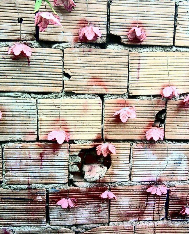 Flores de plástico não morrem Flores Flowers Paint Tijolos Colors Cores Open Edit