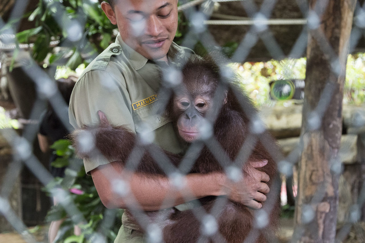 The only way to save me is through you!! HUMAN!! who at the first place made me extinct. Adult Affectionate Animals In The Wild Bonding Care Day Friendship Leisure Activity Love Mammal Men Nature Outdoors People Pets Togetherness Tree Two People Young Adult