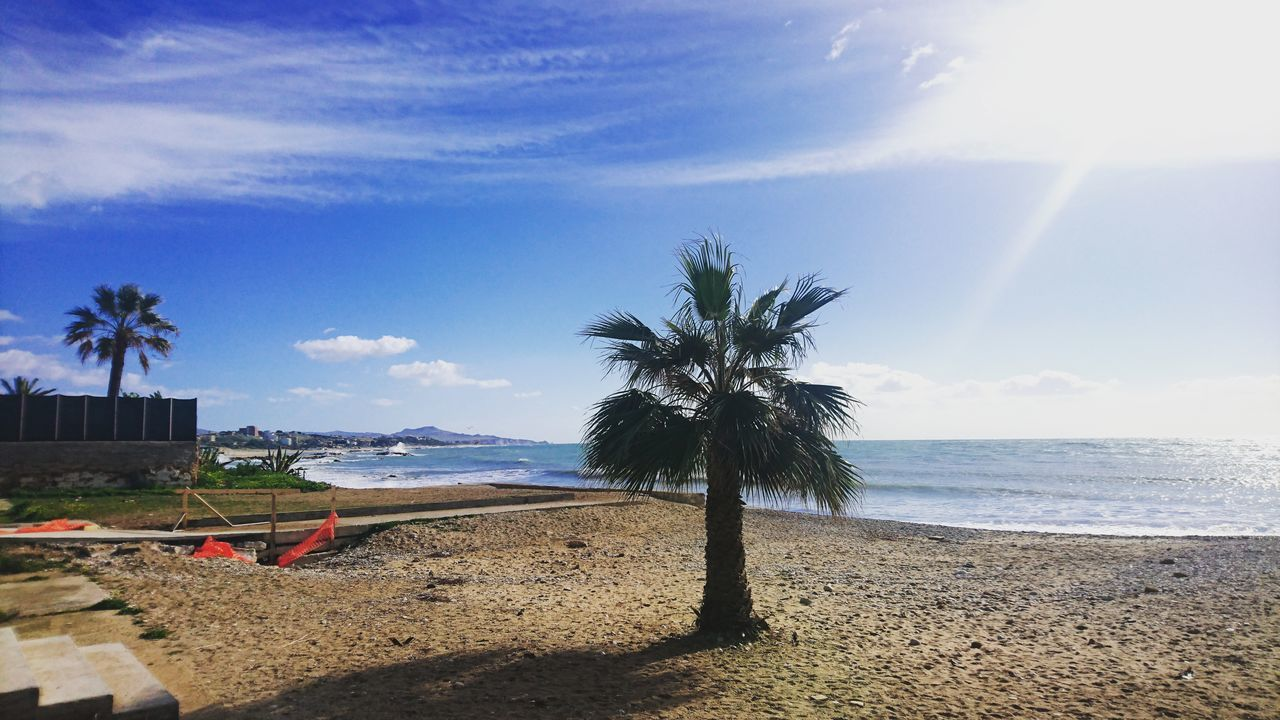 Sky Palm Tree Tree Sea Nature Beach Beauty In Nature Growth Horizon Over Water Cloud - Sky Scenics Tranquility Water No People Tranquil Scene Outdoors Day Sand Agrigento