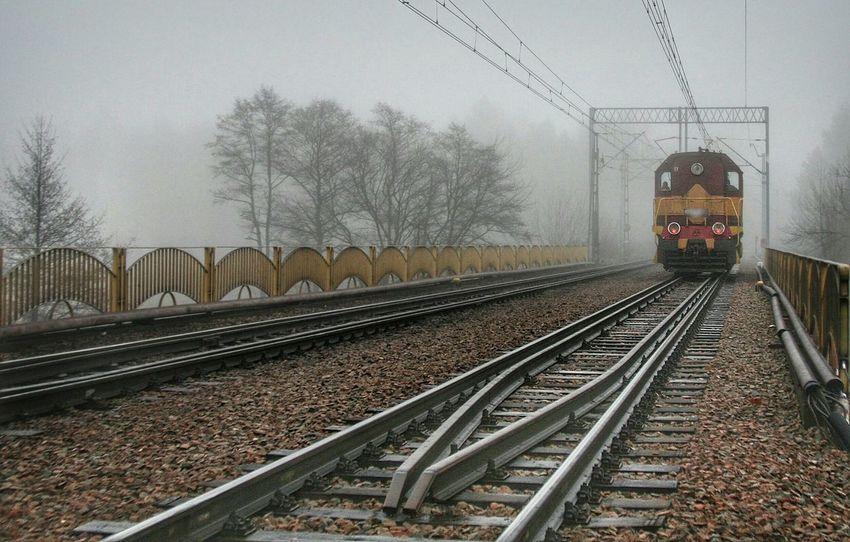 Train in fog Fog Foggy Morning Train Railway Bridge Bridge In Fog Rails Railroad Railway Beautiful Nature EyeEm Best Shots Eyeemphotography EyeEm Best Edits Beautiful Morning
