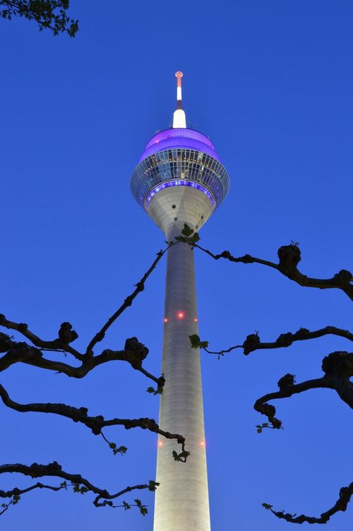 City By Night TV Tower Blue Sky