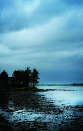 Strangford Lough Strangford Blue Hour County Down Northern Ireland
