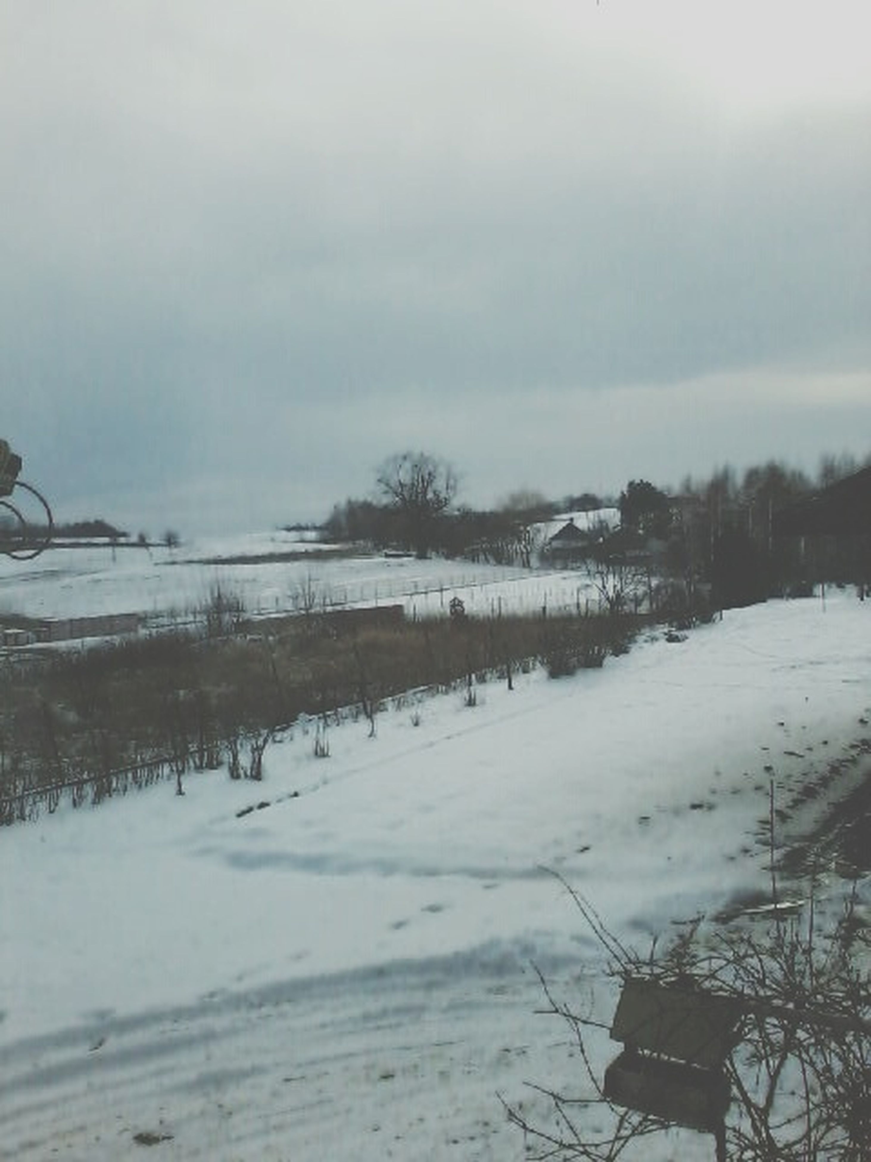 snow, winter, cold temperature, weather, season, covering, frozen, field, sky, nature, landscape, tranquility, tranquil scene, covered, tree, beauty in nature, scenics, white color, snow covered, outdoors