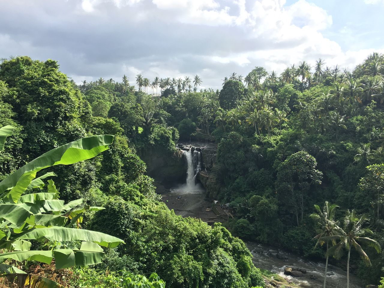 Bali Ubud Tegenungan Waterfall View Breathtaking Picturesque Scenic Paradise Beauty In Nature Water Green Picoftheday