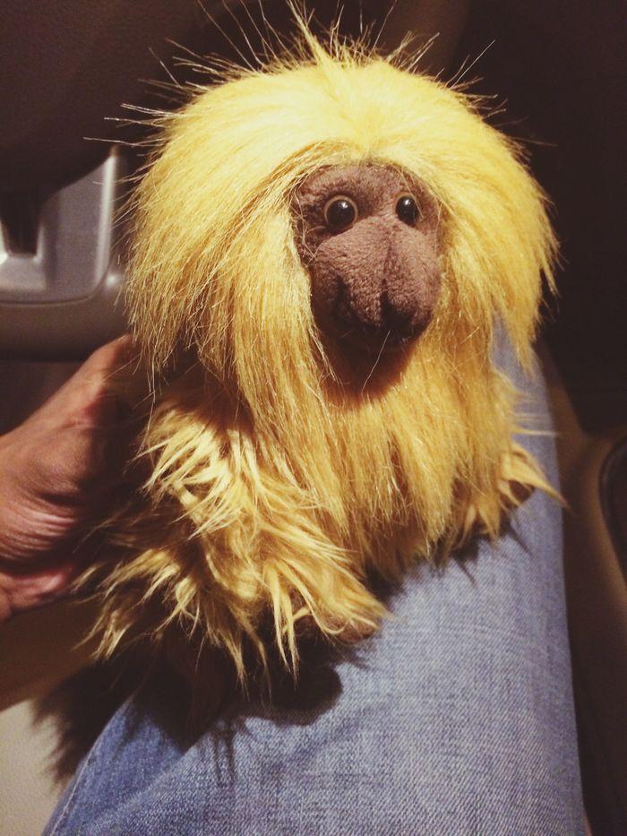 My New_friend Monkey Temari