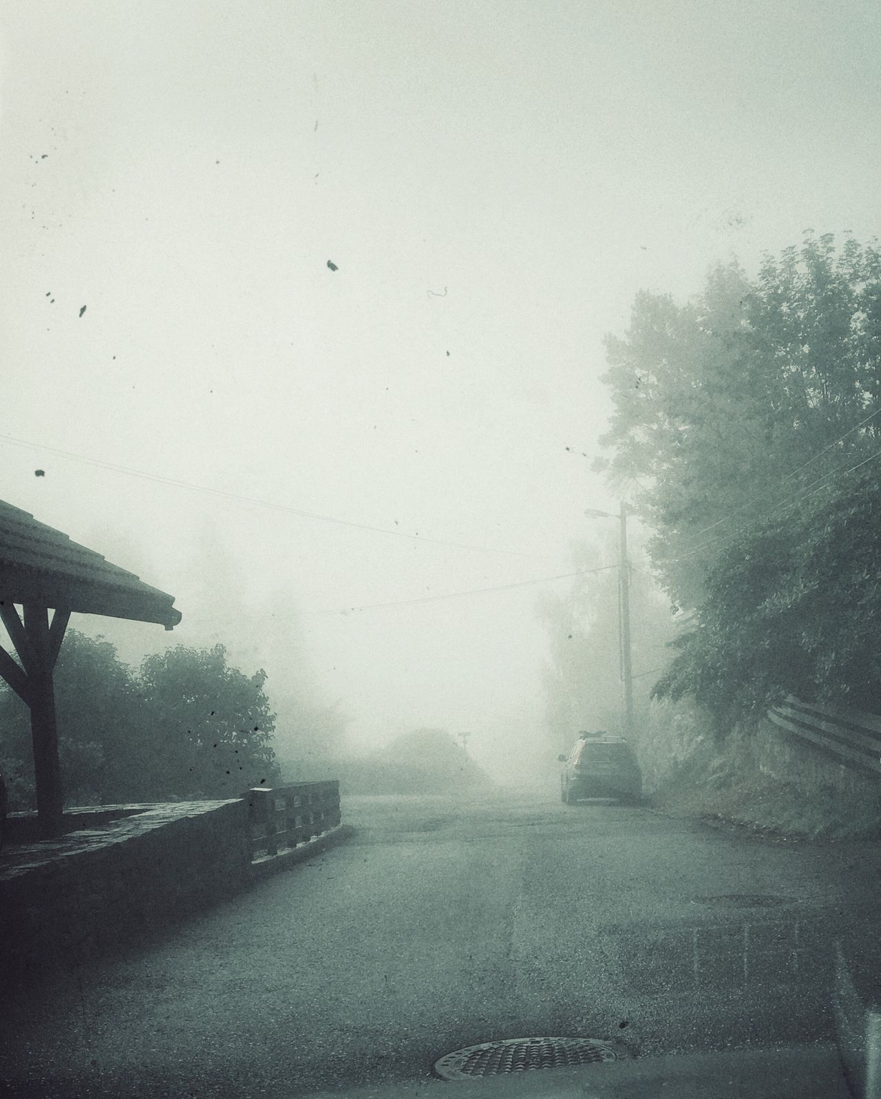 Foggy Morning Fog_collection Fogscape Gray Vintage Style Foggy