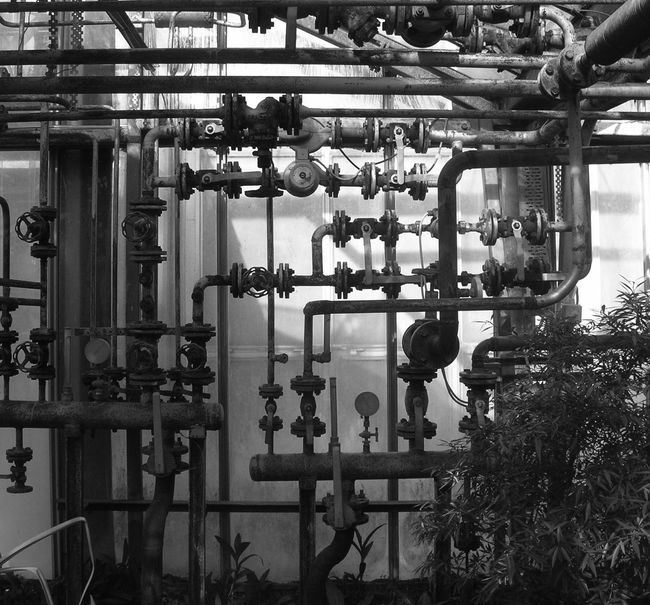 Water pipe system in Vácrátót Arboretum, Hungary. Black And White Black And White Photography Complexity Connection Consequences Difficult Difficulty Flow Chart Glasshouse Logic Measure Measurement Meters No People Pipes Thermometer Water Pipes