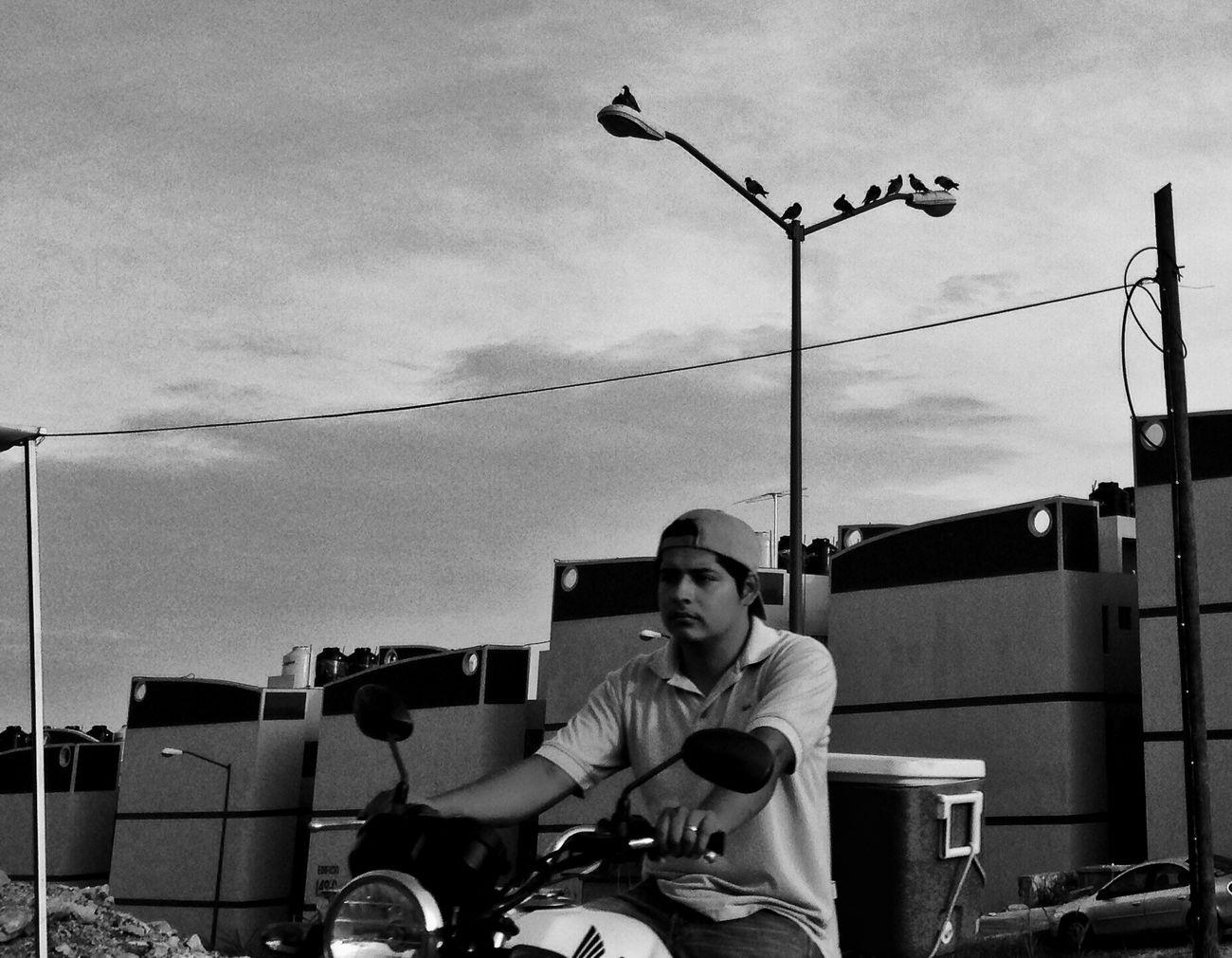 El faro de los pájaros... Streetphotography IPhoneography Urban@ndante Monochrome Blackandwhite