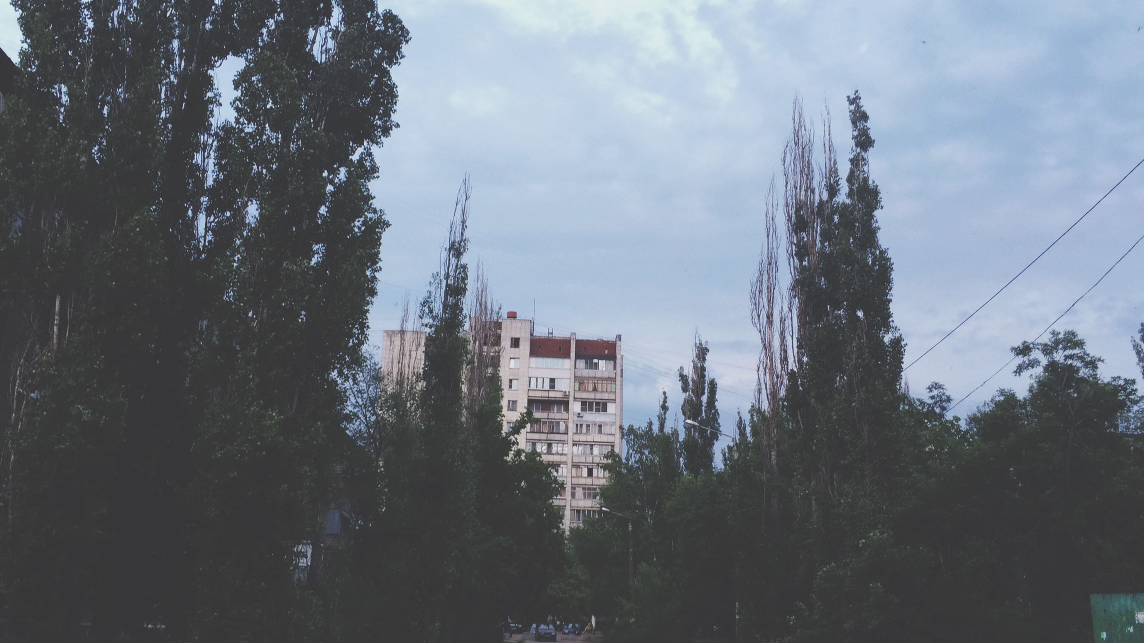 architecture, building exterior, built structure, low angle view, tree, sky, cloud - sky, building, cloud, cloudy, residential structure, residential building, city, outdoors, day, no people, house, tall - high, growth, tower