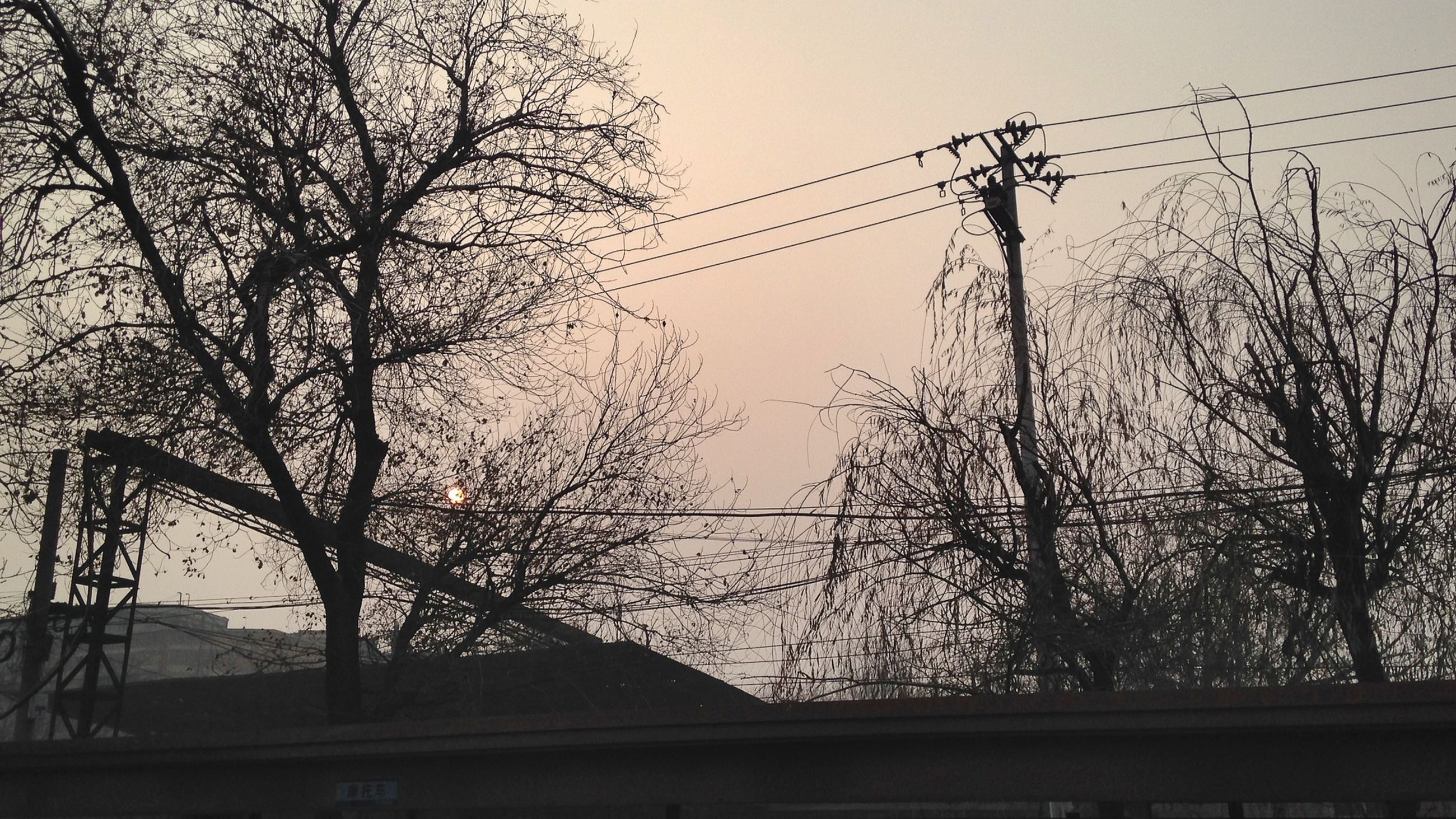bare tree, silhouette, clear sky, tree, power line, connection, electricity pylon, branch, cable, sky, electricity, low angle view, power supply, built structure, architecture, nature, outdoors, no people, sunset, power cable