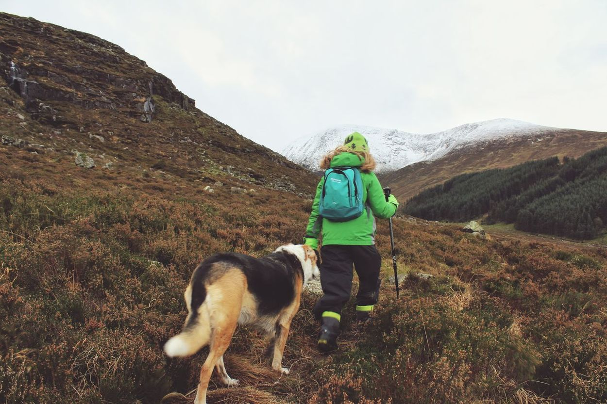Daughter & Dog lead the way... Adventure Buddies Mountains Winter Walk Mountain View Mountain_collection Best Friends EyeEm Best Shots Young Girl Hiking Landscape Capturing Freedom Girl Power Wilderness Escapism Mourne Mountains Slieve Donard Original Experiences Two Is Better Than One Adventure Family Walks EyeEm Gallery Wilderness Adventure Great Outdoors Protecting Where We Play Young Girl With Dog Share Your Adventure Perspectives On Nature Rethink Things