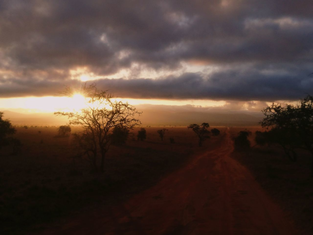 Sunrise Nature Beauty In Nature Sky Tree Cloud - Sky Dramatic Sky Taitahills Tsavo Savannah EyeEm Best Shots EyeEm Best Edits Africa Safari VSCO Miles Away Kenya Travel Destinations Landscape Adventure