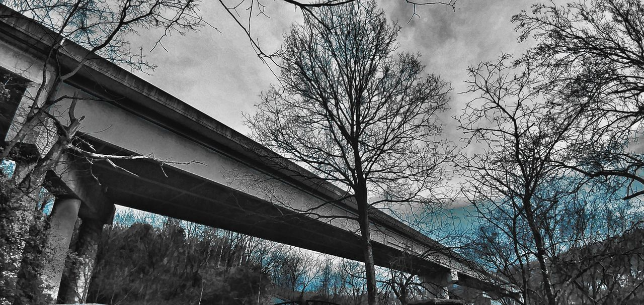 Tree No People Low Angle View Nature Outdoors Sky Concrete Overpass View. Kentucky  Fort Boonesborough St. Park EyeEmNewHere BYOPaper! Investing In Quality Of Life